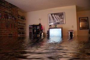water damage repair cibolo tx